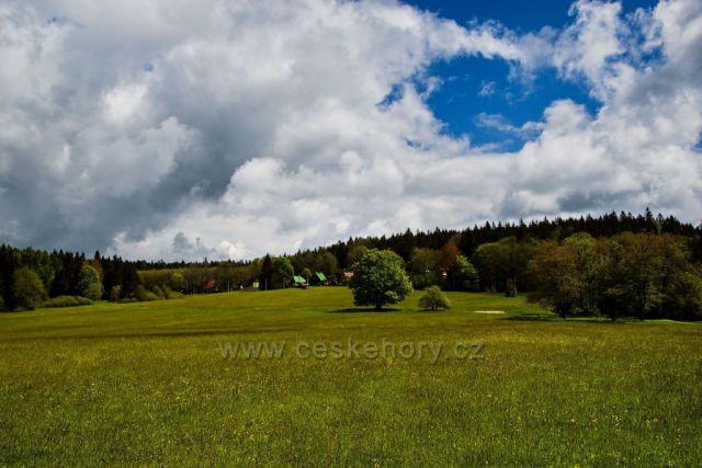 Carpatické louky, Český les