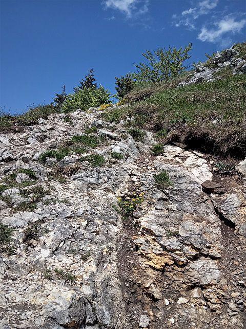 Posledný úsek trasy na Drienok