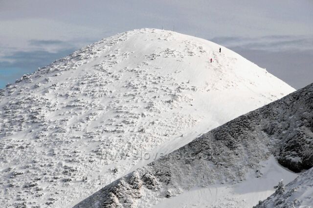 Běloba kopců