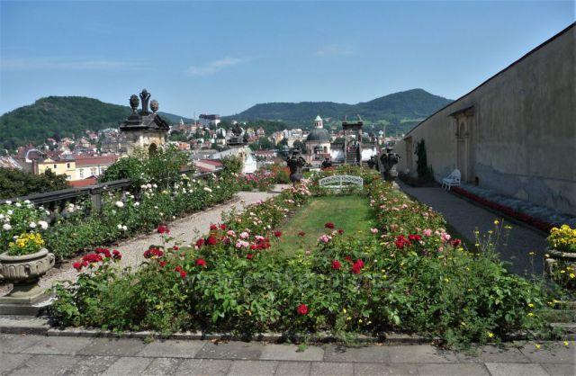 Zámek Děčín - růžová zahrada