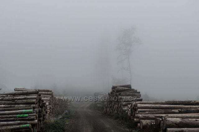 pohromu v lese kryje mlha...