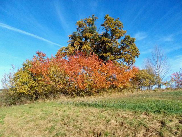 Podzim u Hlinska