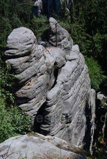 Velbloud Prachovske skaly