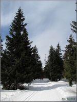 Telekomunikační vysílač stojí jen několik metrů od vrcholové kóty Černé hory 1299 m.n.m. Stavební práce prováděla v letech 1974-77 polská firma Budimex a původní elektronické zařízení dodala Unitra Warzsawa.