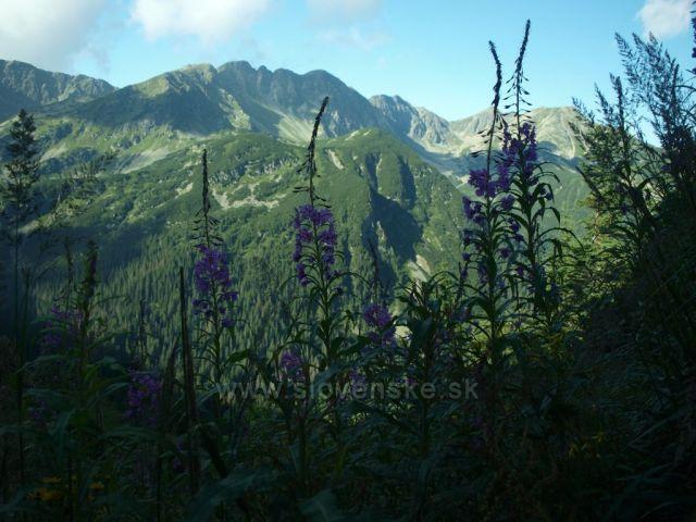 Výstup na Volovec
