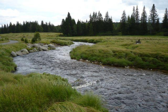 Roklanský potok - Šumava