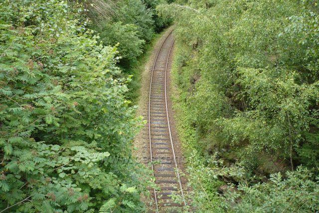 Železnice v přírodě