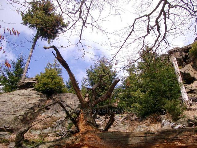 Hora sv.Šebestiána a blízké okolí
