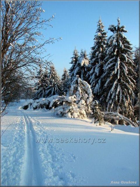 Typický tvar vrchu Kozákova také poskytuje četné vyžití milovníkům zimních sportů