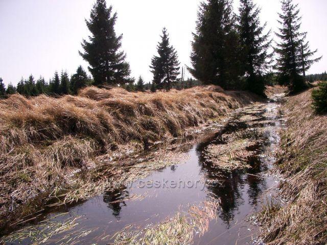 Novoveské rašeliniště - pramen Chomutovky