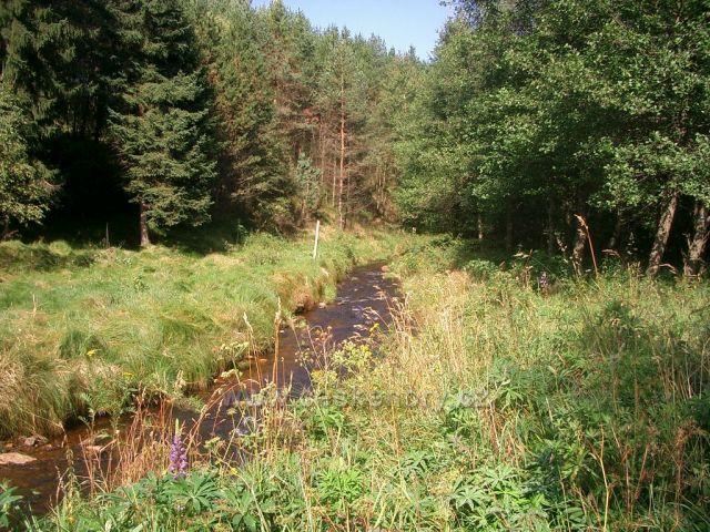 Kalek hraniční potok