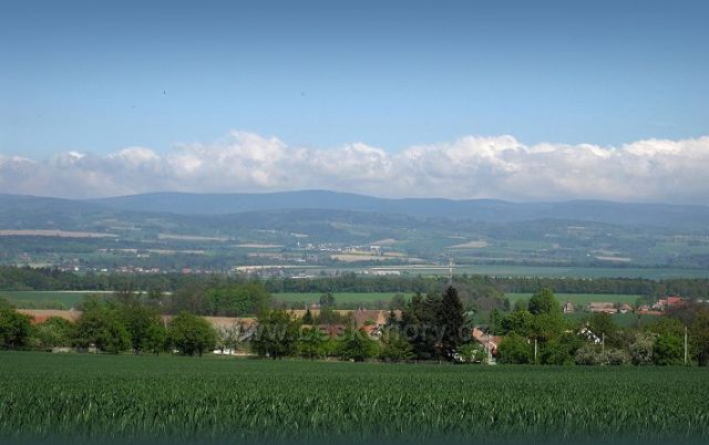 panorama Orlických hor