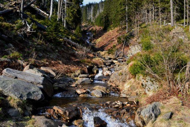 Dlouhý důl v Krkonoších