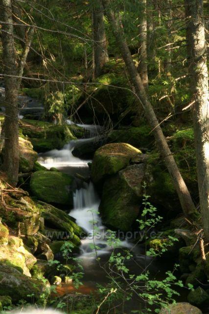 Šumava - Filipohuťský potok