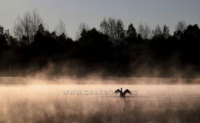 """Labutí jezero"""