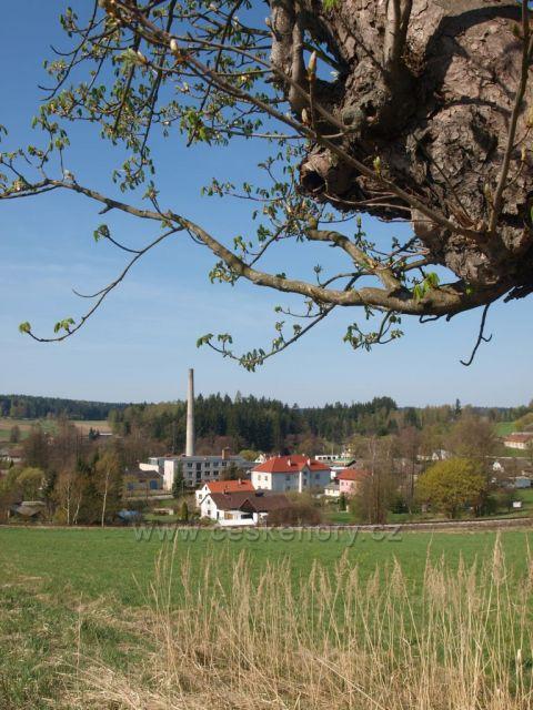 Včelnička u Kamenice nad Lipou
