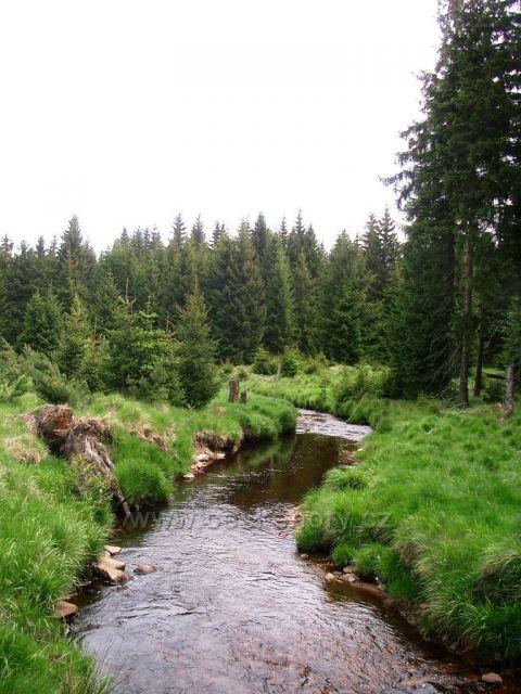 potok Černá