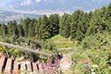 Alpy - Rakousko