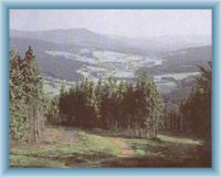 Pohled z vrcholu Špičáku na Železnorudskou kotlinu